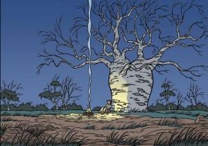 4 J3_Baobab Tree